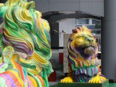 lions arc-en-ciel