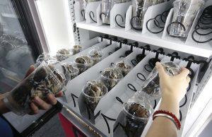 distributeur automatique de crabes vivants