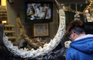 sculpture ivoire hong kong