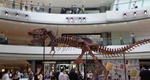 tyrannosaure IFC Mall