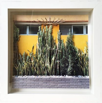 Cactus Wall par Camille Levert