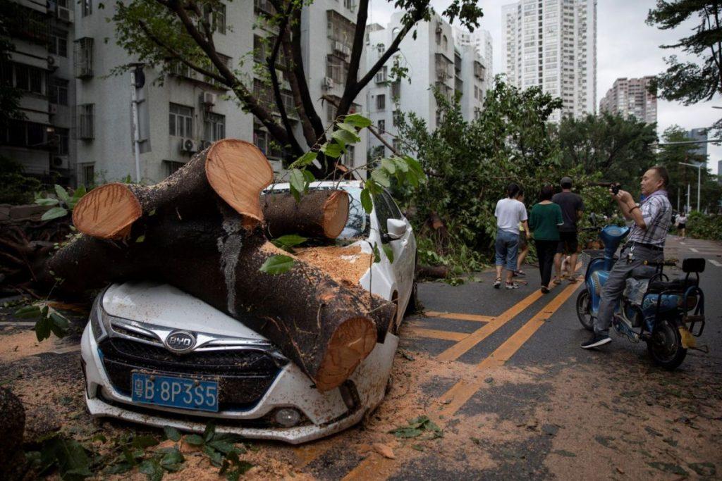 Voiture Shenzhen Mangkhut