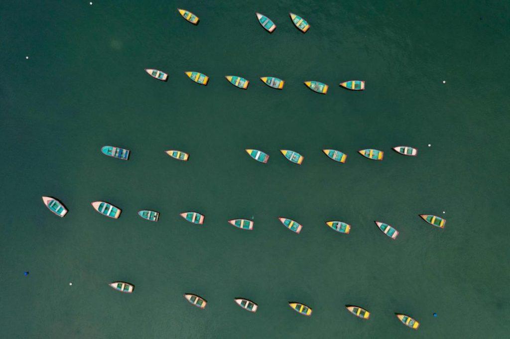 barques hong kong