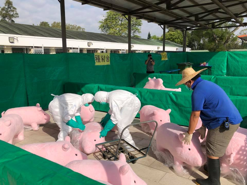 cochons peluche Hong Kong